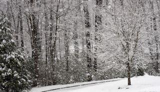 Snownado