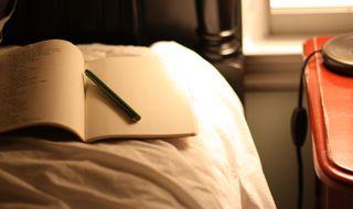 Nightjournal2